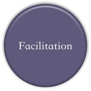 Facilitation Bevel